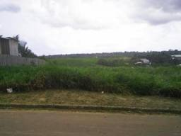 Terreno à venda em Centro, Ipixuna cod:X58884