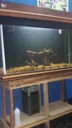 Aquario de 400L