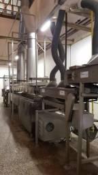 Linha Contínua Para Fabricação De Batata Frita Completa