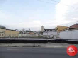 Terreno para alugar em Santa paula, São caetano do sul cod:172594