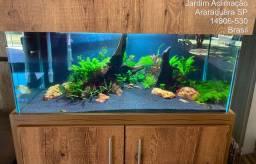 Aquario 200L plantado completo