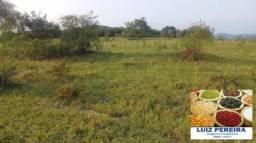 FAZENDA EM CARACOL - MS - (Agricultura, Pecuária, Exploração de granito)