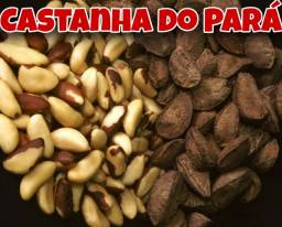 Venda de Castanha do Pará inteira sem Casca. e Pague com Auxilio Emergencial.