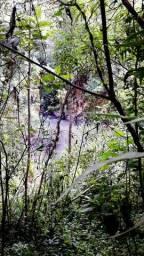 Sítio/chácara 5.3 hectares em Rio Rufino