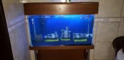Aquário 170 litros de água doce + Móvel + Iluminaria + Filtro Tidal