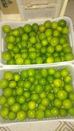 Limão tawiti orgânico