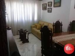 Apartamento para alugar com 2 dormitórios em Vila mascote, São paulo cod:213269