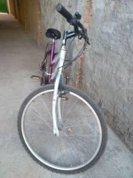 Vendo bicicleta (Paraíso)
