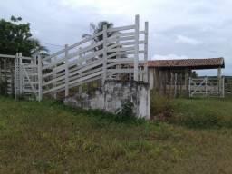 Fazenda em monte alegre, 30 há. duas casas, poço, curral, rio, galpão