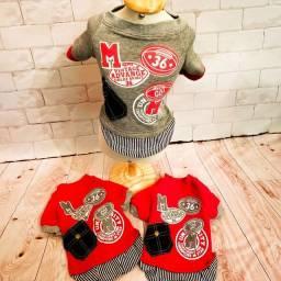 Vestidinhos, Moletons, Camisetinhas Diversas cores e modelos próprios para PET