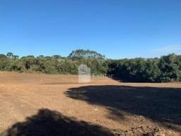 Terreno rural de 20 mil m² na colônia marcelino, são josé dos pinhais