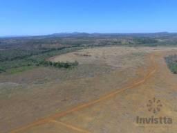 Fazenda de 136 Alqueires Próximo à Paraiso do Tocantins