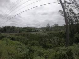 Terreno à venda em Vila são jorge, Siderópolis cod:30109