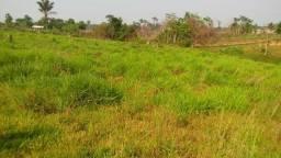 Colônia 50 hectares