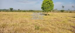Título do anúncio: 18.5 Alqueires formado em Pastagem