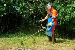 Limpeza terreno