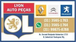 Lyon auto peças - tudo para seu Renault, Peugeot, Citroen