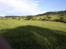 Fazenda em Jandaia | 34 Alqueires | 80 mil alqueire | Oport única