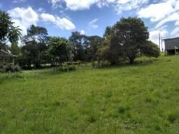Chacrinha com Nascente - Vila Franca - Piraquara - 2.563 m²