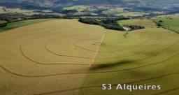 Título do anúncio: Fazenda 53 Alqueires - Piraju-Sp