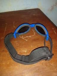Oculos De Passeio Para Cães