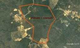Fazenda Junco em Sento Sé - Bahia