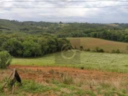 Chácara à venda, 38000 m² por R$ 1.200.000,00 - Colônia Murici - São José dos Pinhais/PR