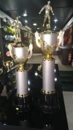 Troféu , Medalha e Gravação