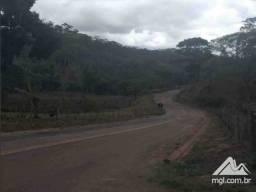EF) JB13868 - Terreno rural com 105,88 há na cidade de Rio Vermelho em LEILÃO
