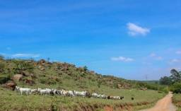 DA - Chácara, Sitio, Fazenda, Terreno, Lote - Sem Juros