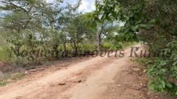 Terreno de 1.138 m², loteamento do Bosque (Nogueira Imóveis)