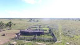 Fazenda no Pará,310 alqueires a 12.000 mil o alqueire , pra gado plana