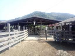 Fazenda de 1.313 alqueires, sendo parte em SP e parte no Paraná