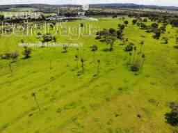 Fazenda 22 Alqueirao Terra de Bacuri de Primeira Qualidade Montada Pecuaria