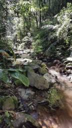 Chácara em Campo Largo-PR - 20 min do calçadão - Raridade