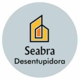 Desentupidora Seabra