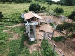 Título do anúncio: Porteirinha-MG -Fazenda formada com 133,00 ha com água de rio perene