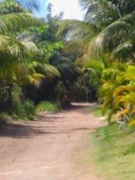 Vendo casa em Barra Grande