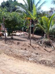 Título do anúncio: Vendo esse terreno em Lauro de Freitas vida nova