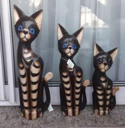 Trio de Gatos importados Bali Indonésia