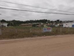 Terreno à venda em Vila são jorge, Siderópolis cod:30100