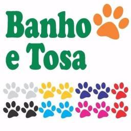 Banho e Tosa com produtos Ibasa