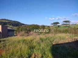 Título do anúncio: Terreno à venda, 1626 m² por R$ 180.000,00 - RIO DAS PEDRAS - Videira/SC