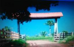 Sítio à venda, 53 alqueires por R$ 2.650.000 - Área Rural - Alto Paraíso/RO