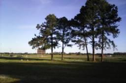 Terreno frente BR 392
