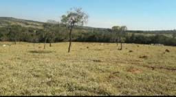 Alugo terreno para instalação de fazenda solar. Fotovoltaica. N Cemig.