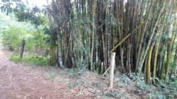 Vende-se Bambu