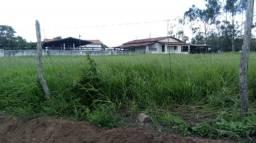 Fazenda-Granja-Sítio Área para Loteamento com 43 Hectares Entre Timbaúba e Ferreiro