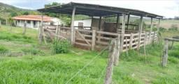 Fazenda no DF e entorno região do Santo Antônio do Descoberto - GO na Lagoinha