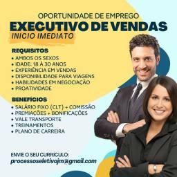 Título do anúncio: EXECUTIVO DE VENDAS - INÍCIO IMEDIATO